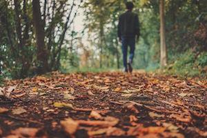 autumn-1869160__480