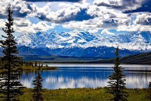 denali-national-park-1733313__480