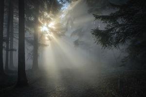 winter-sun-1547273__480